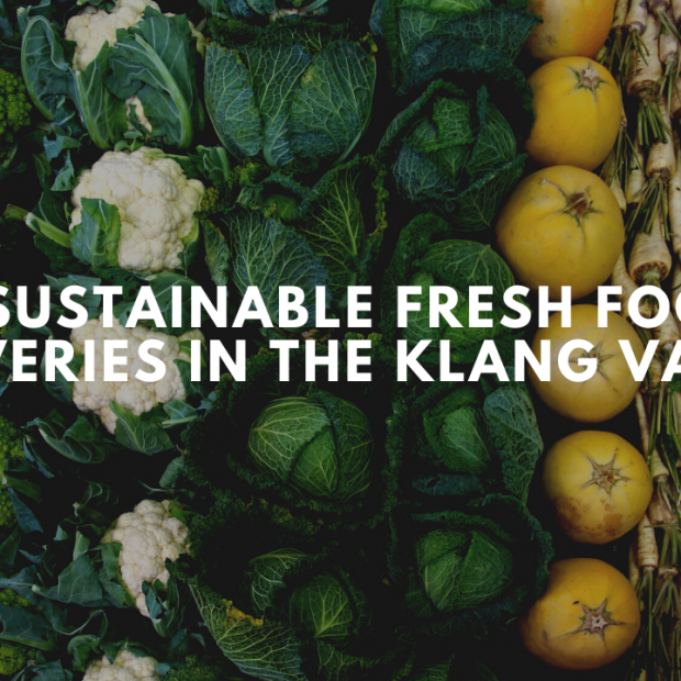 8 Sustainable Fresh Food Deliveries in the Klang Valley